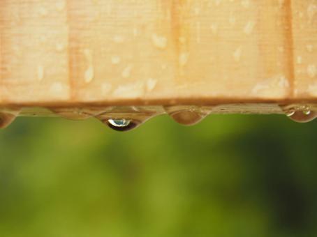 Drops after the rain