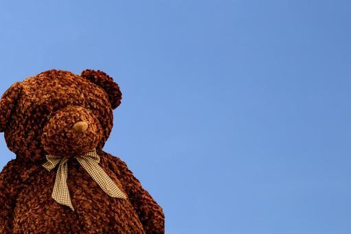 Bear plush space
