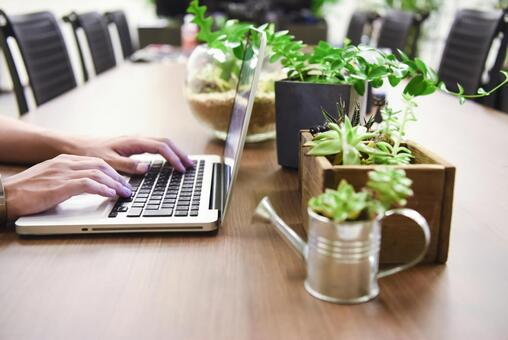 Laptops and foliage plants