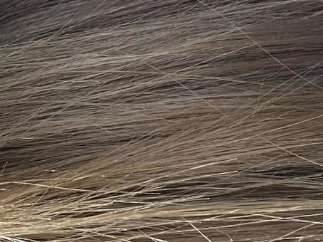 머리카락 질감