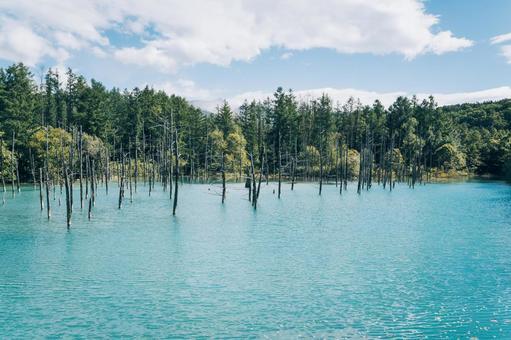 푸른 연못