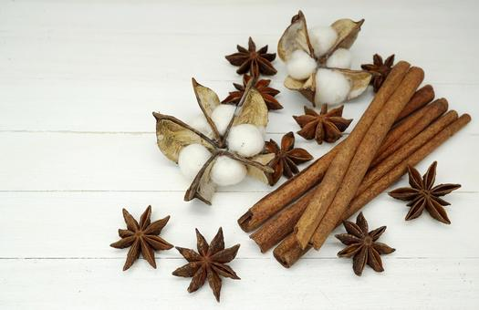 Cinnamon and star anise and cotton flower _ background white