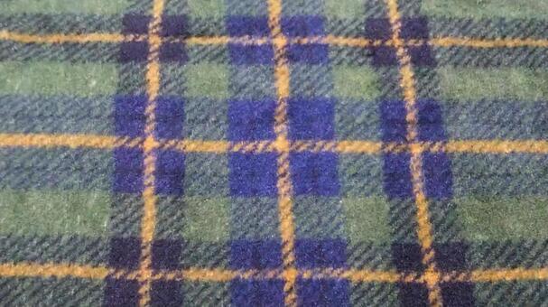 Fabric (green plaid)