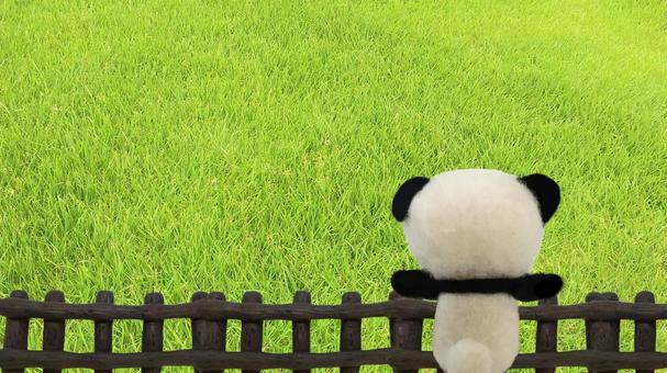 Next lawn image