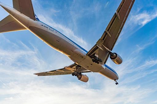 Airport Plane (Itami Airport) 102