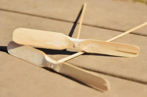 Bamboo dragonfly image