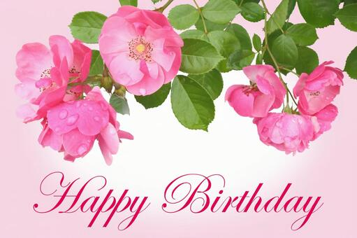 Roses' birthday cards 6