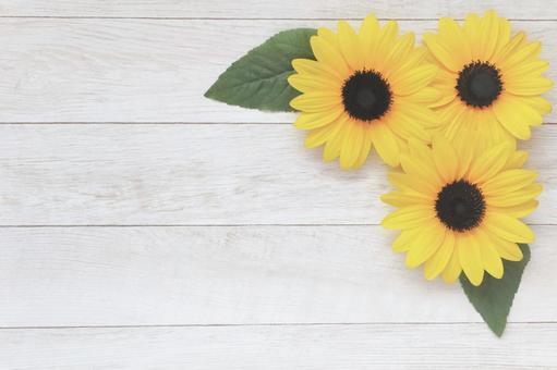 Sunflower summer sunflower flower background frame wallpaper