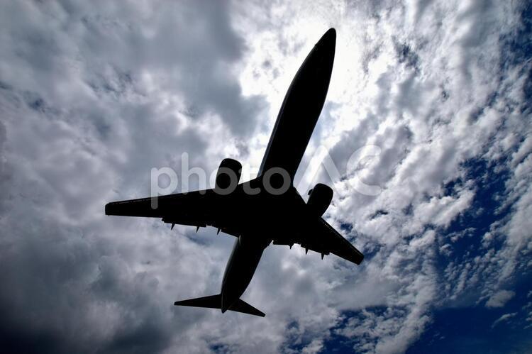 飛行機の影の写真
