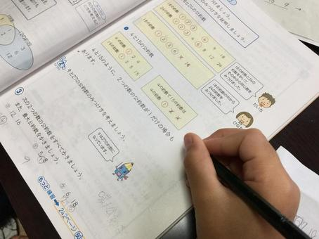 The elementary school student who studies.