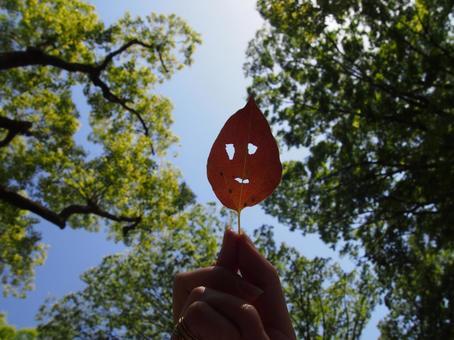 얼굴에 보이는 낙엽