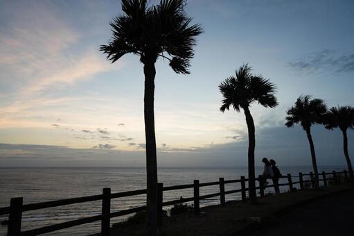아마미 오시마의 오 하마 해안