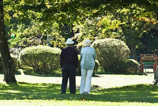 Senior couple behind