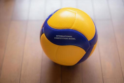 排球官方用球