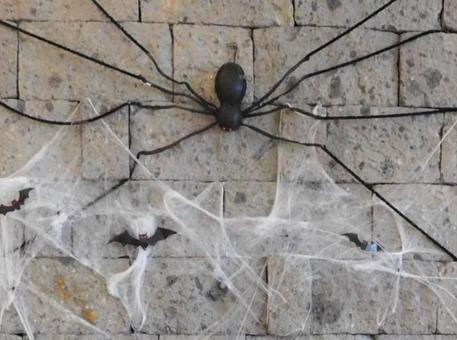 할로윈 거미 장식