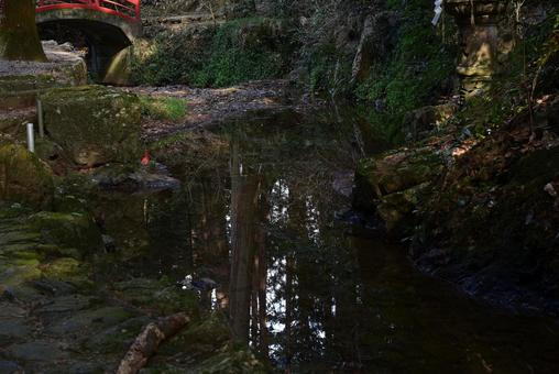 The surface of a beautiful stream that reflects the scenery like a mirror in the forest