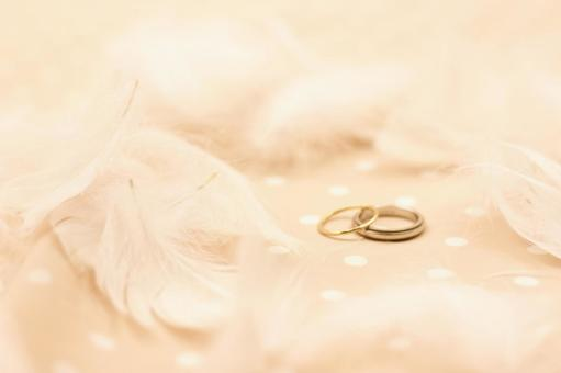 Marriage wheel 4