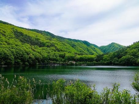 Four-tailed lake