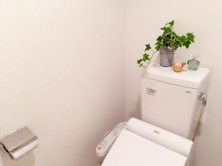 Interior of the toilet · Feng Shui