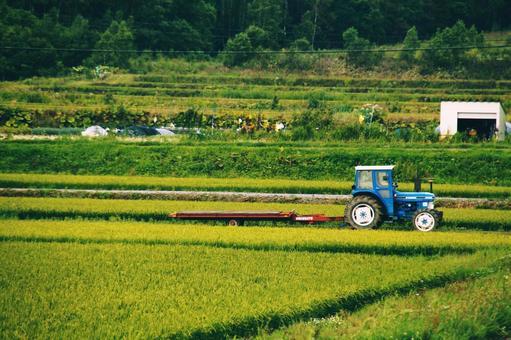 농사일 중 트랙터