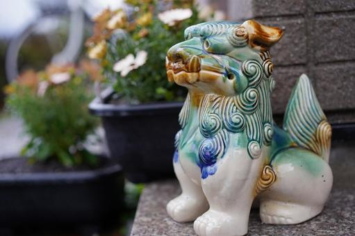 Shisa, the guardian god of my home