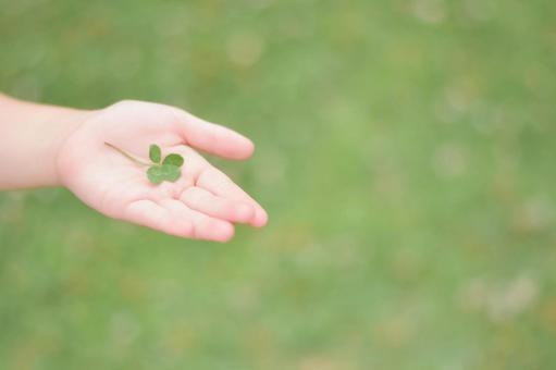 Four leaf clover and hands of children