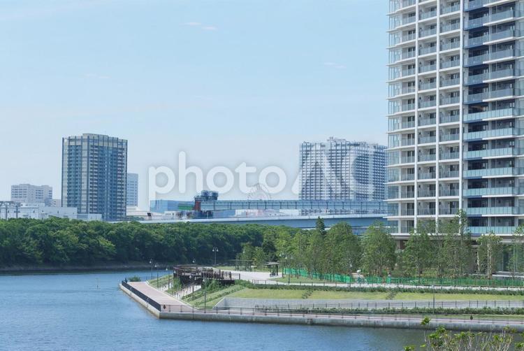 ベイエリアに建つ高層マンションの写真