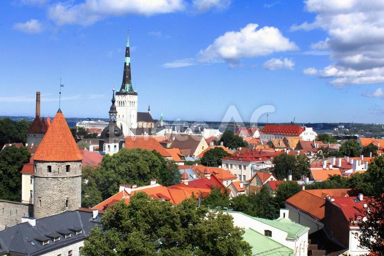タリン旧市街(エストニア)の写真