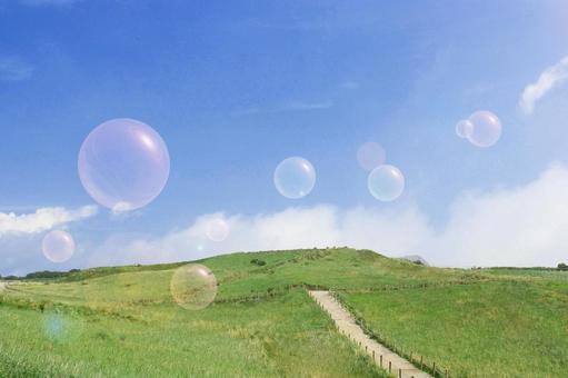 Meadow soap bubbles