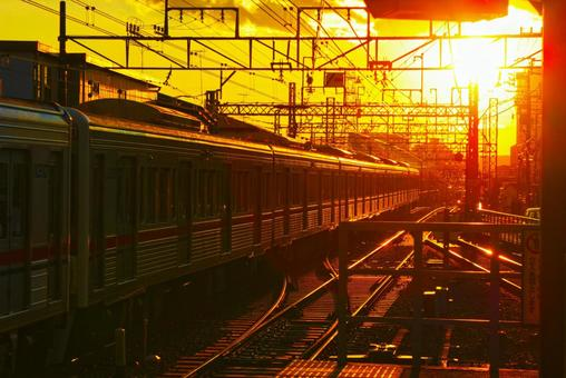The Keio Line Lamped by the Sunset
