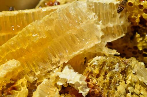 Nest honey immediately after being taken out of the beehive Immunity Close-up Material Background