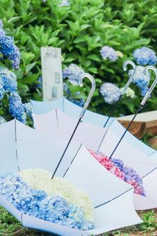 Umbrella with hydrangea ②