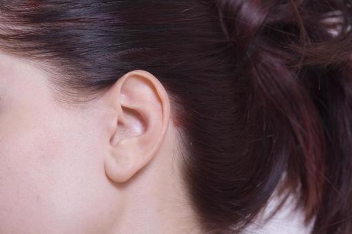 여성 귀와 머리 2