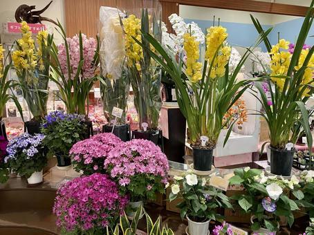 Flower shop # 3