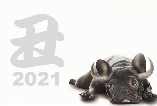 2021 New Year's card French bulldog character psd