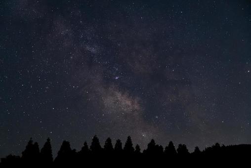 森林和銀河系的中心