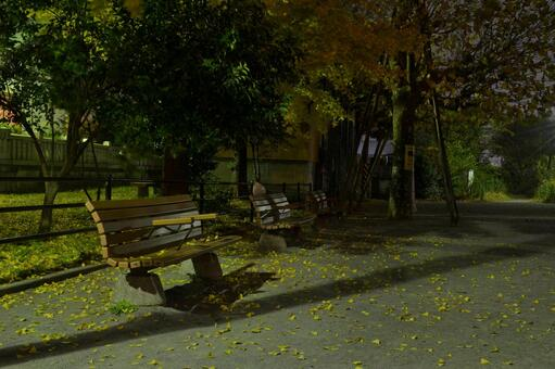 Night park bench and square