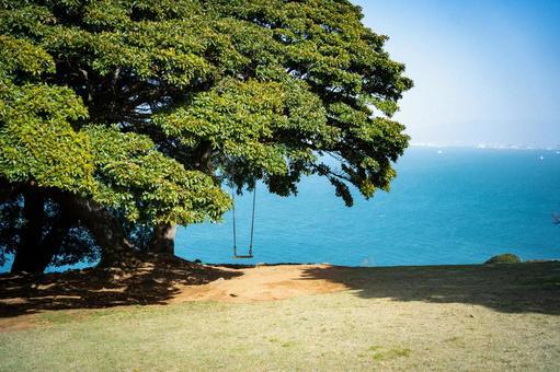 나무 그늘의 그네와 에메랄드 그린의 바다