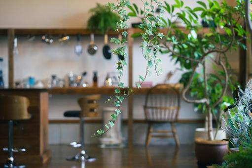 Fashionable space with foliage plants (focus is on the plants)