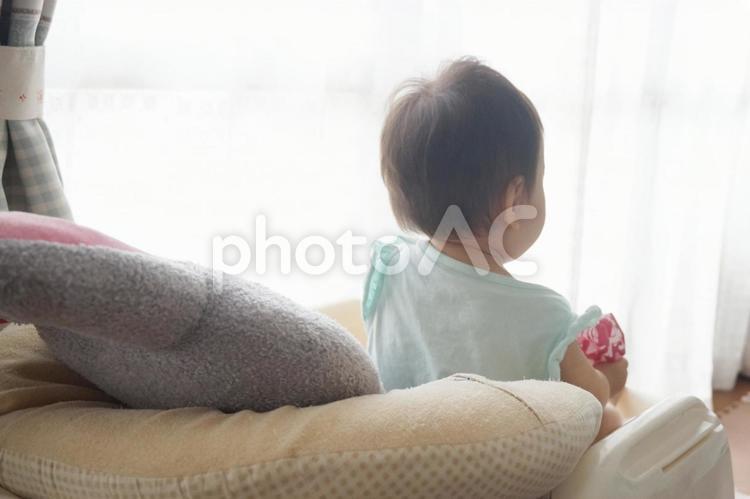 バウンサーに座る赤ちゃんの後ろ姿の写真