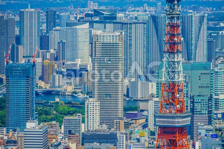 東京タワーと都市風景の写真