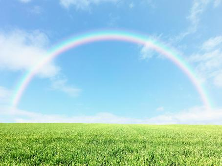 Blue sky and rainbow in the meadow 4