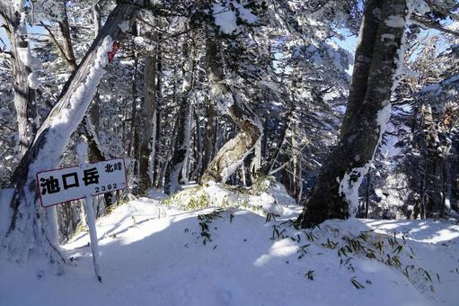 Winter Ikeguchidake summit north peak