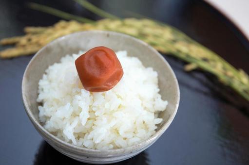 Rice and Umeboshi