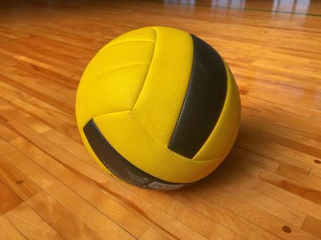 排球,運動,排球