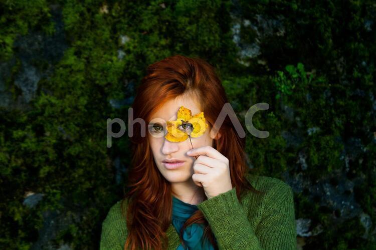 落葉から覗く女性5の写真