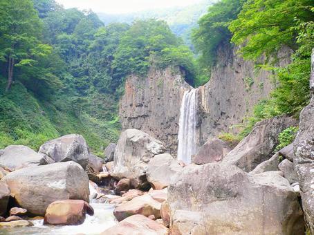 Majestic seedling name Falls (2)