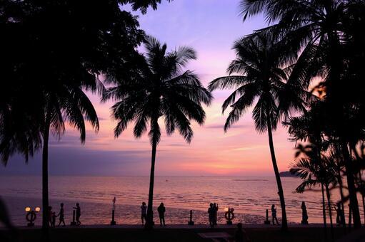 Beach resort 285