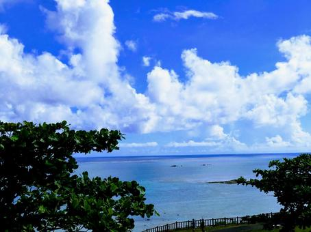 Okinawa sea_hill where the sea can be seen 2
