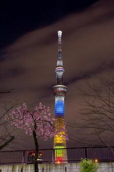 Tokyo Sky Tree in spring